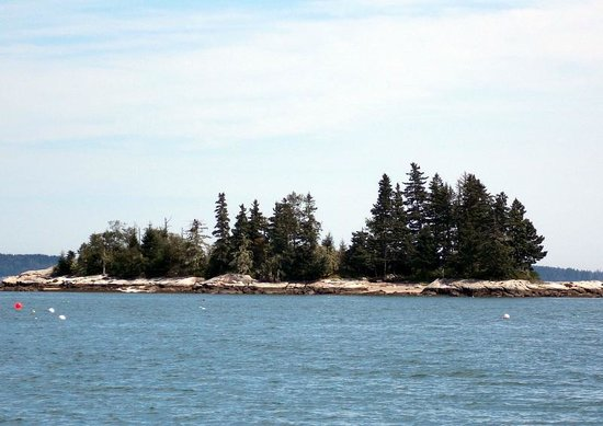 Lobster Buoy Campsites: View of the island off the beach