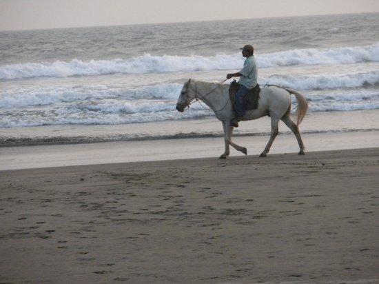 Redwood Beach Resort : Northern tip of Nicaragua, only a bike ride away.