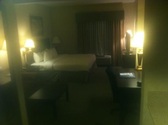 Comfort Inn & Suites: nice rooms...