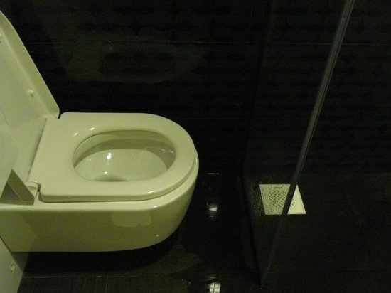 Venue Hotel: an average adult can't fit into the toilet...