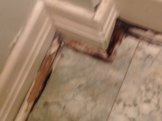 Inn on the Riverwalk: Bathroom floor mold