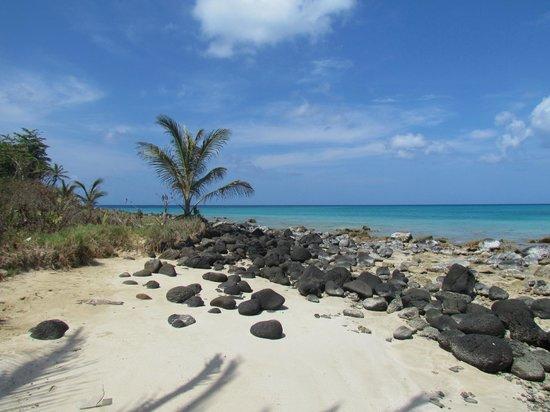 Picnic Center Restauarant: au bout de la plage