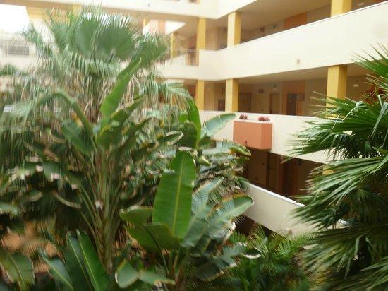 Elba Carlota Beach and Convention Resort: patio