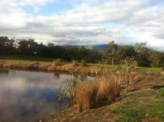 Ainsworth Estate: So pretty! The dam in front of the spa unit