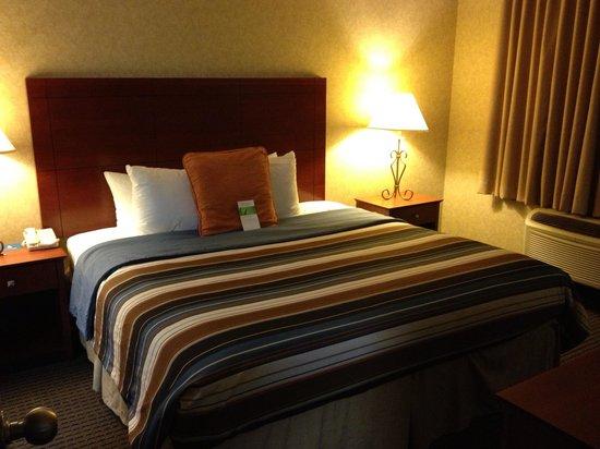 حياة هاوس شارلوت إيربورت: Huge bed