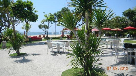 The Segara Suites: Tao....restaurant and swimming....5 min walk