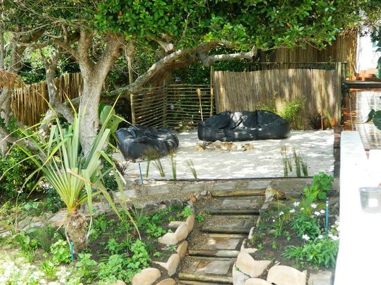 Backpackers Beach House Lodge: outdoor chill area