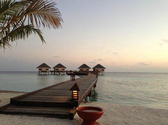 อดารัน เพรสทีจ วาดู รีสอร์ท: Honeymoon villa