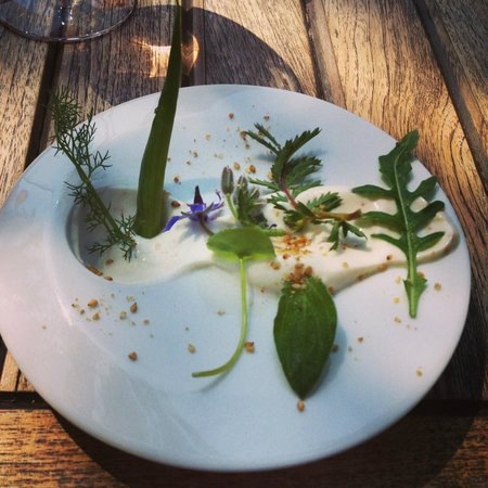 L et Lui : Various herbs and plants, including wild fennel