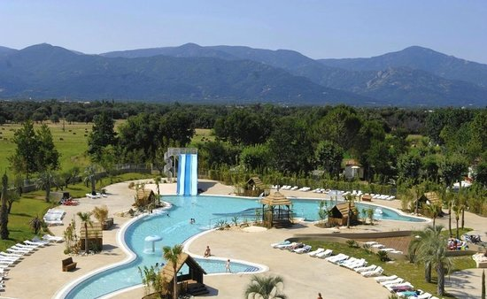Flying the flag picture of camping le dauphin argeles for Camping var piscine bord de mer