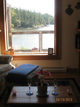 Arbutus Cove Guesthouse: View from the couch