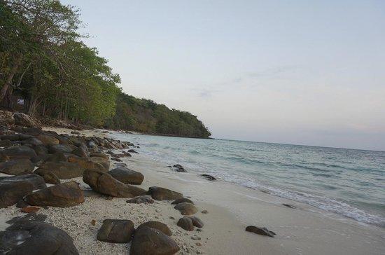 พีพี เนเชอร์รัล รีสอร์ท: beach
