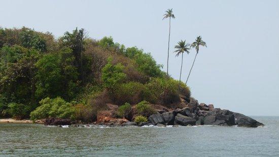 Mymos Goa: On Sal River