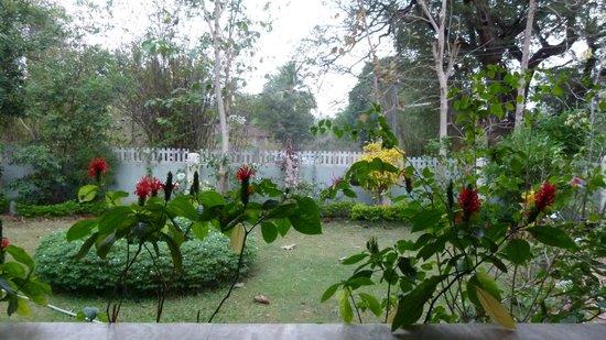 Mymos Goa: Mymos Garden