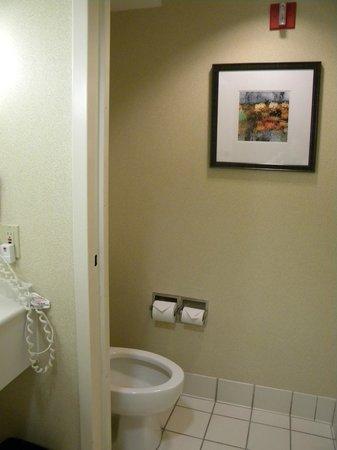 Holiday Inn Atlanta Airport South: Bathroom