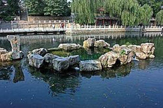 Dongliu Spring