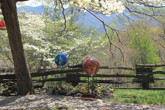 Snowbird Mountain Lodge: Dogwood Tree