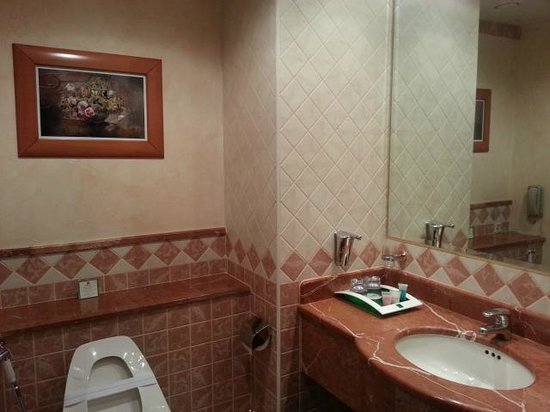 Holiday Inn Al Khobar: Wash Room