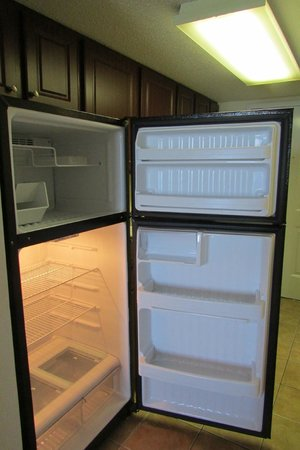The Patricia Grand, Oceana Resorts: clean fridge