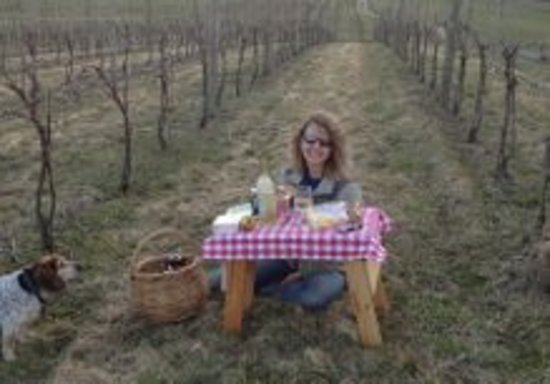 Cassel Vineyards of Hershey: Our beautiful vineyard is a great place to bring a picnic lunch!