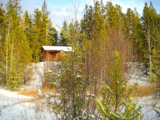 Mica Mountain Lodge & Log Cabins: Cabin