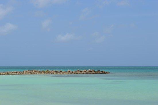 In front of divi phoenix going towards other hotels for Aruba divi phoenix