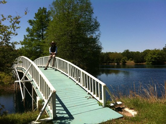 BlissWood Bed and Breakfast Ranch: Lake