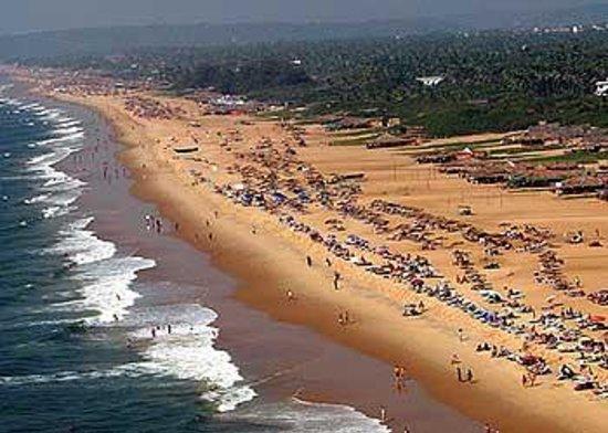 Hotels Near Candolim Beach