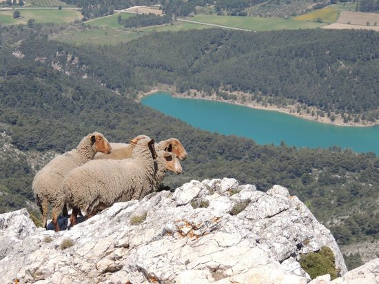 Montagne Sainte Victoire: so girls, now where's lunch?