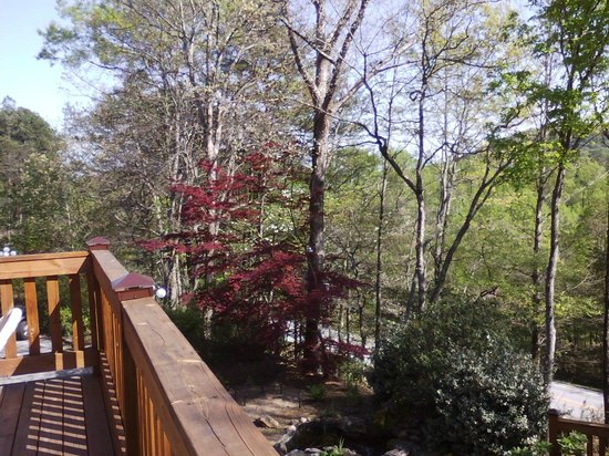 Sylvan Valley Lodge: View from deck
