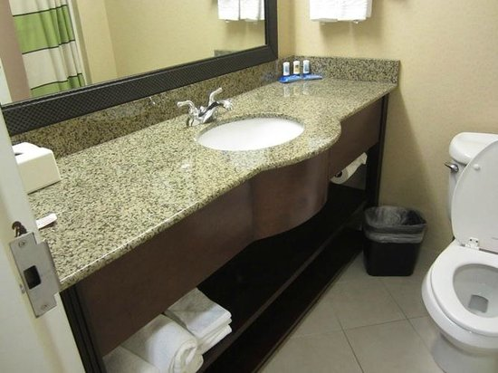 Fairfield Inn & Suites Valdosta: LOVE this updated bathroom - plenty of storage space