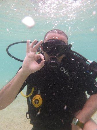 Golden Divers: Koh Tao