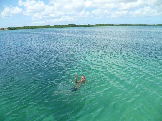 Sorobon Beach Resort: Excelente para nadar y hacer snorkel