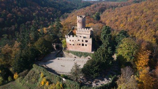 La Volerie des aigles: Le château vu d'oiseau