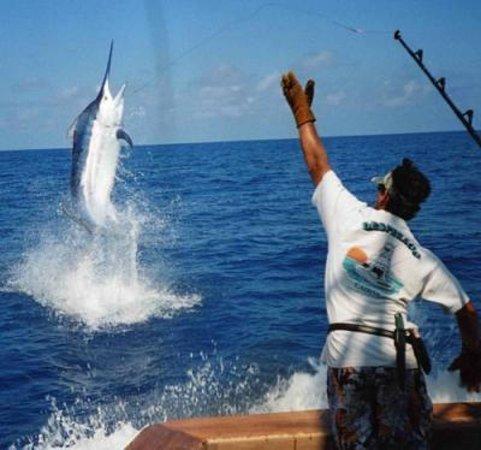 Sport fishing Pinino: pininos adventures in Brasili