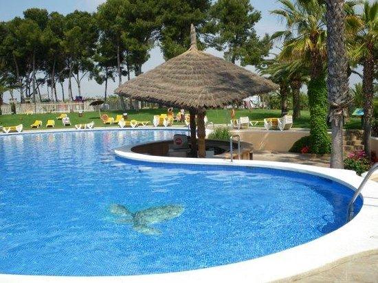 Tapas picture of camping resort sanguli salou salou for Plano piscina