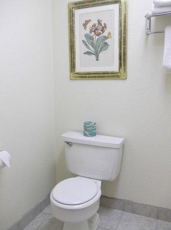 Days Inn Modesto: Les toilettes séparées et décorées