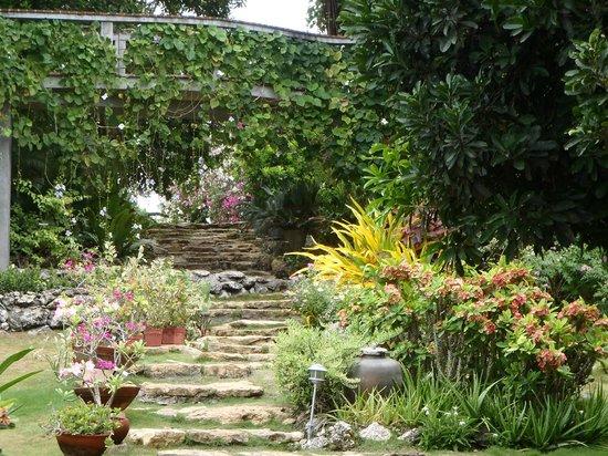 Amarela Resort: Jardin