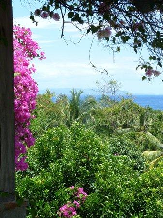 Amarela Resort: Vue de la chambre