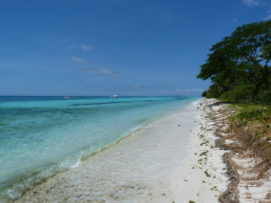 Amarela Resort: Plage
