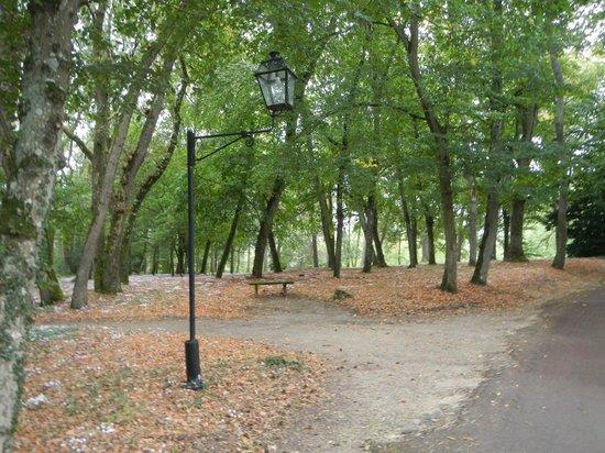 Domaine de la Tortiniere: Grounds