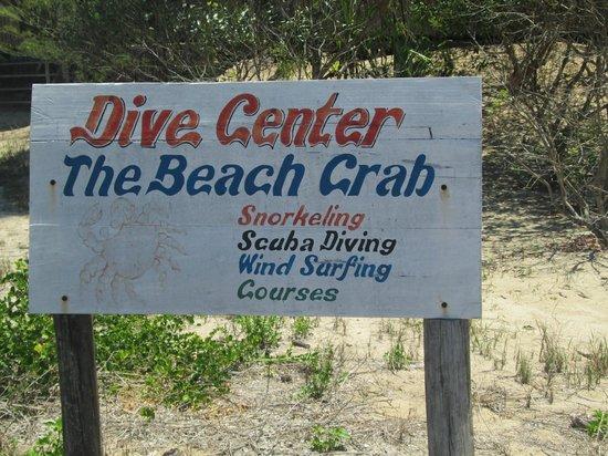 Beach Crab Resort: Aktivitäten