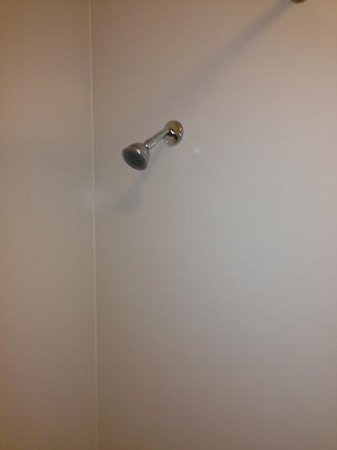 La Quinta Inn Ventura: shower head was up to my shoulder!!