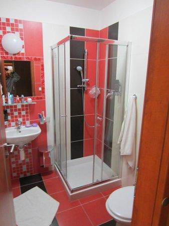 Hotel U Martina - Smichov: Bathroom