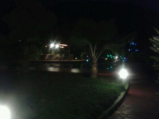 The Fern Gardenia Resort: Pool at night