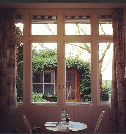 Bed and Breakfast Amsterdam : Beautiful garden view