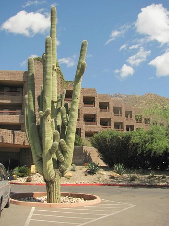 Loews Ventana Canyon Resort: front of resort
