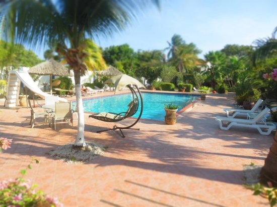 Club Arias B&B: cozy pool was perfect for relaxation