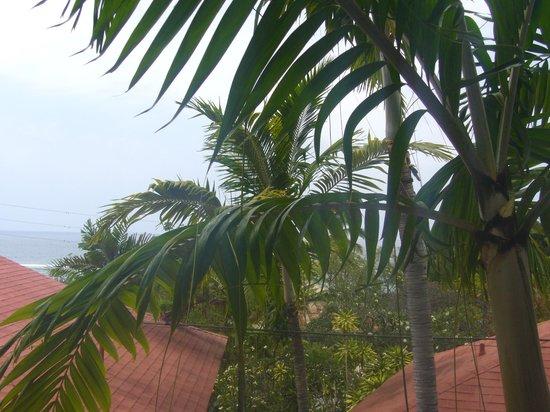 Big island retreat- Sea view room