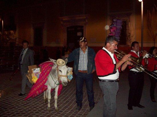 Zacatecas, Meksiko: Burro cargando el agua miel (licor) listo para la callejoneada